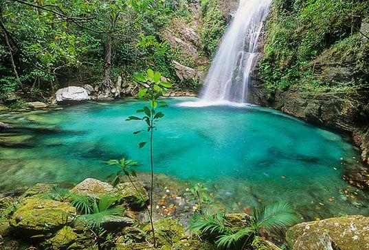 Découvrez le parc national de la Chapada dos Veadeiros au Brésil