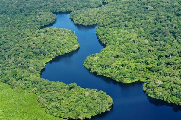 brésil environnement